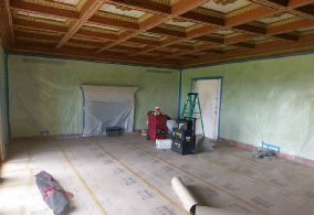 Mold-removal-experts-hollywood-florida-mold-specialist
