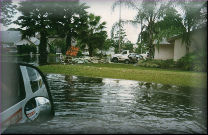 Water Removal Wellington Florida
