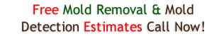 Free Mold Removal & Mold Detection Estimates Call Now!