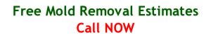 Free Mold Removal Estimates