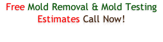 Free Mold Removal & Mold Testing Estimates Call Now!