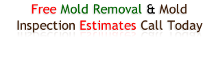 Free Mold Removal & Mold Inspection Estimates Call Today